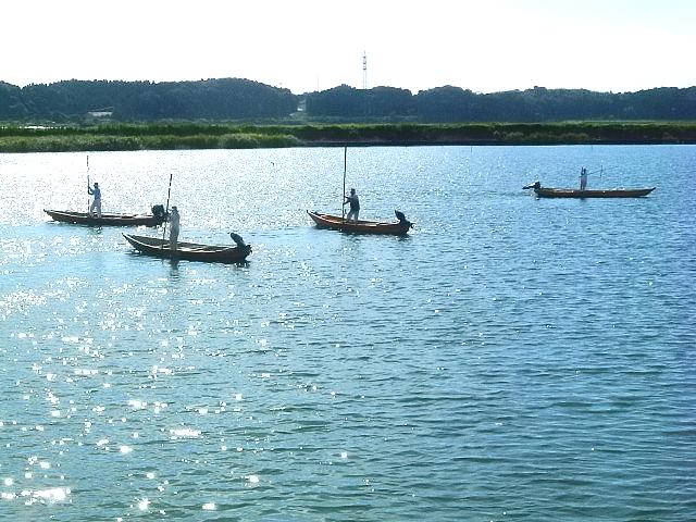 広浦しじみ漁